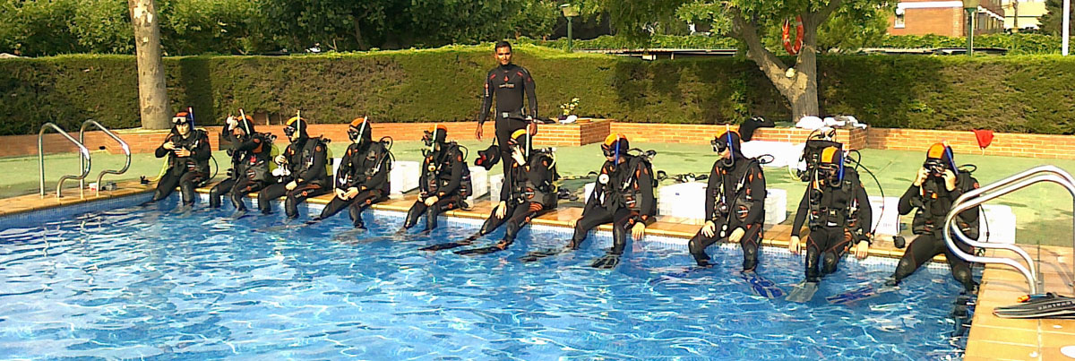 Image result for Diving school